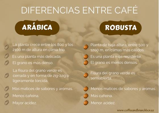 Diferencias entre café Robusta y café Arabica