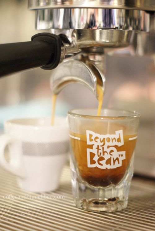 Qué es el café de especialidad - Más allá del grano